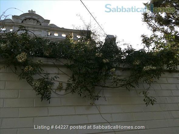 Melbourne gem Home Rental in Brunswick East, VIC, Australia 7