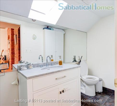 Furnished 4 bed / 2 bath condo with 1 parking spot in beautiful Brookline Home Rental in Brookline, Massachusetts, United States 7