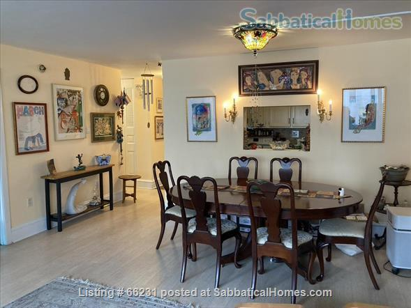 Dupont Circle Sunny, Spacious 1 BR + Den (small BR) Home Rental in Washington, District of Columbia, United States 0