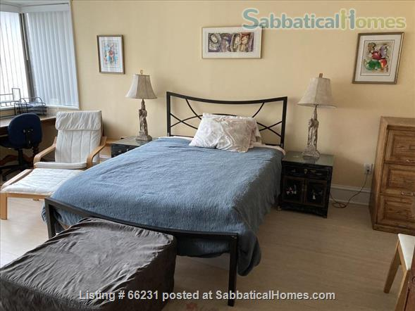 Dupont Circle Sunny, Spacious 1 BR + Den (small BR) Home Rental in Washington, District of Columbia, United States 3