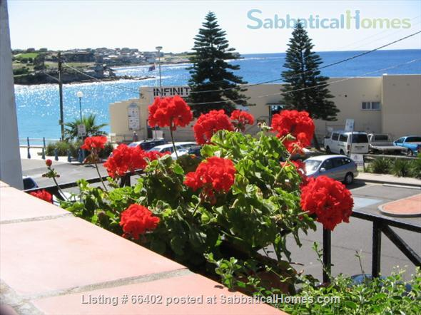 Absolute Waterfront Coogee.  Large, elegant apartment. Home Rental in Coogee, New South Wales, Australia 1