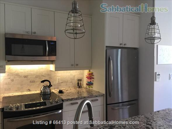 Quiet yet cool location, a home away from home. Walk to U/T and hospitals. Home Rental in Toronto, Ontario, Canada 3