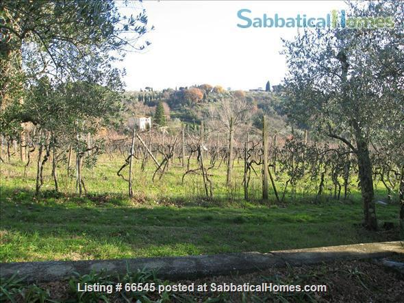 Lovely  apartment in foothills of Florence Home Rental in Florence 6