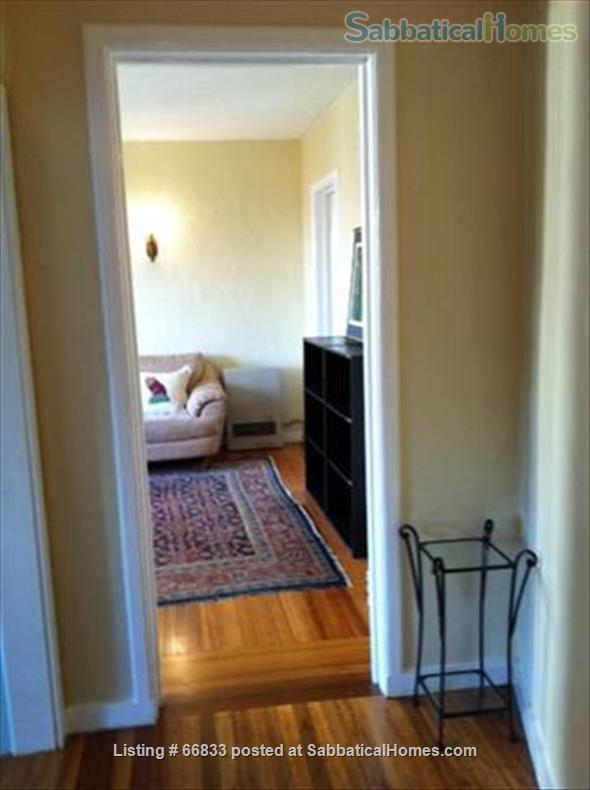 One bedroom Apt in Berkeley Hills - All bills Included! Private large garden Home Rental in Berkeley, California, United States 0
