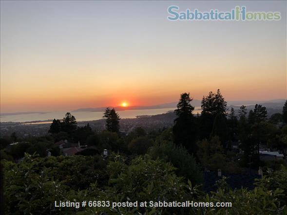 One bedroom Apt in Berkeley Hills - All bills Included! Private large garden Home Rental in Berkeley, California, United States 6