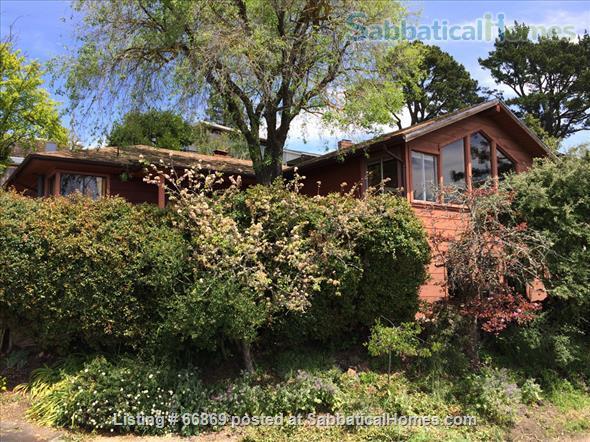 3-bedroom house in the Berkeley Hills Home Rental in Berkeley, California, United States 1