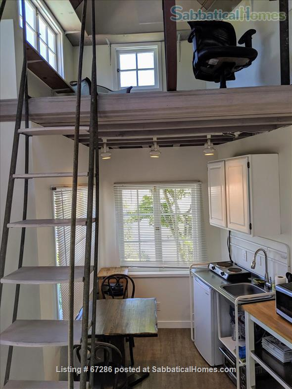 PRIVATE NEWLY REMODELED with A/C and W/D:  QUIET,  walk to IPAM and UCLA Home Rental in Los Angeles, California, United States 8