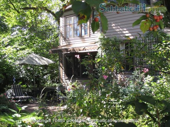 1BEDROOM- HARVARD SQUARE Home Rental in Cambridge, Massachusetts, United States 4