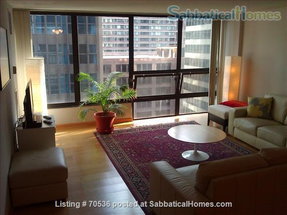 Condo for rent near Magnificent Mile Chicago, IL (downtown in Streeterville neighborhood) Home Rental in Chicago, Illinois, United States 1