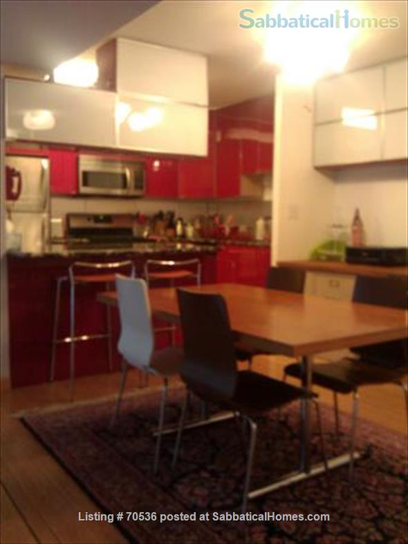 Condo for rent near Magnificent Mile Chicago, IL (downtown in Streeterville neighborhood) Home Rental in Chicago, Illinois, United States 2