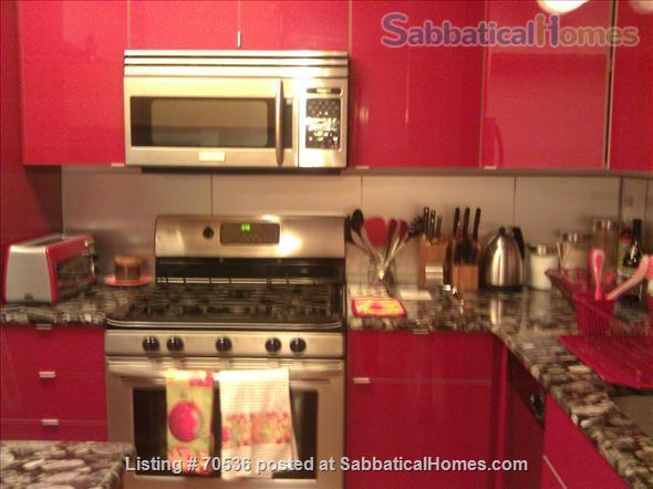 Condo for rent near Magnificent Mile Chicago, IL (downtown in Streeterville neighborhood) Home Rental in Chicago, Illinois, United States 3