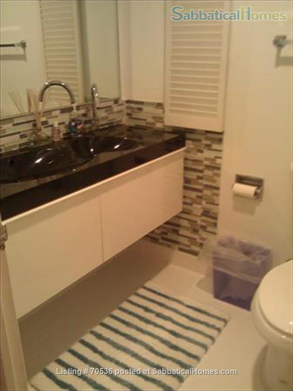 Condo for rent near Magnificent Mile Chicago, IL (downtown in Streeterville neighborhood) Home Rental in Chicago, Illinois, United States 5