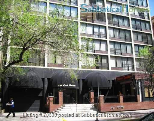 Condo for rent near Magnificent Mile Chicago, IL (downtown in Streeterville neighborhood) Home Rental in Chicago, Illinois, United States 6