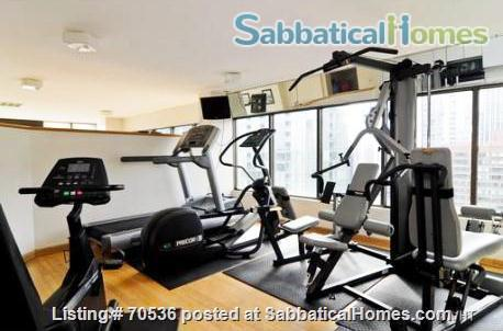 Condo for rent near Magnificent Mile Chicago, IL (downtown in Streeterville neighborhood) Home Rental in Chicago, Illinois, United States 7