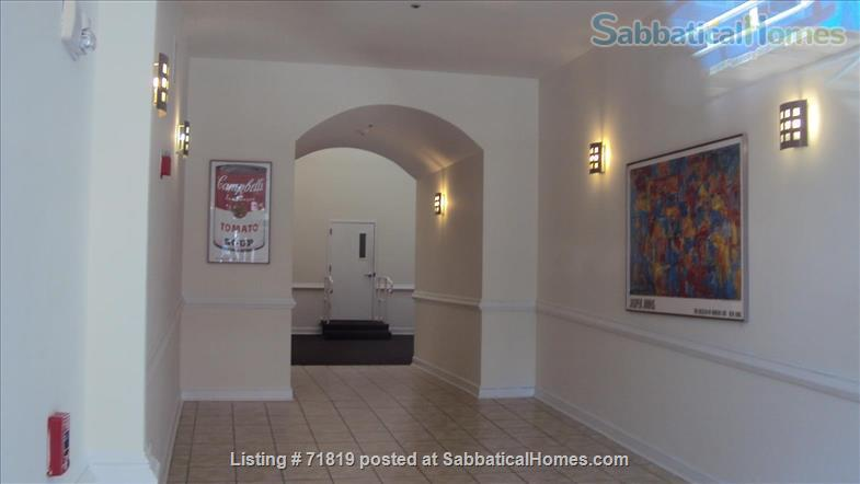 1BR Contemporary loft style condo,  Downtown / Yale New Haven (furnished) Home Rental in New Haven, Connecticut, United States 9