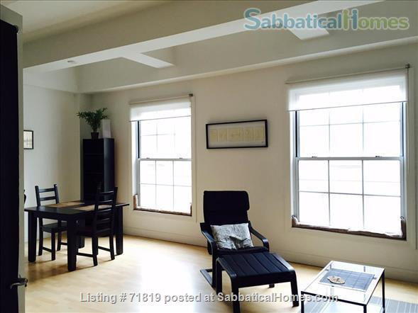 1BR Contemporary loft style condo,  Downtown / Yale New Haven (furnished) Home Rental in New Haven, Connecticut, United States 1