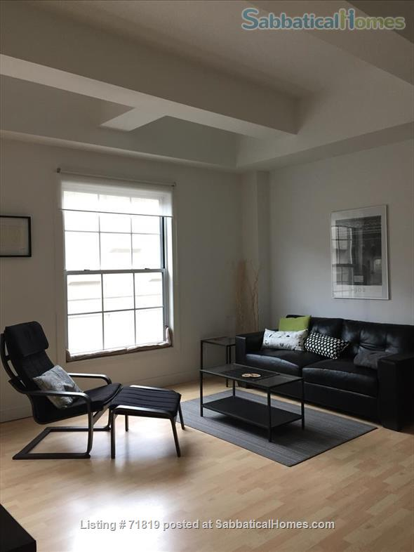1BR Contemporary loft style condo,  Downtown / Yale New Haven (furnished) Home Rental in New Haven, Connecticut, United States 4