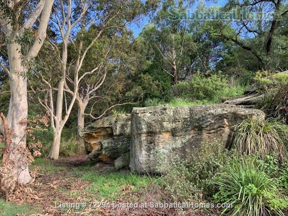 Sunny garden apartment in  inner Sydney  Home Rental in Haberfield, New South Wales, Australia 7