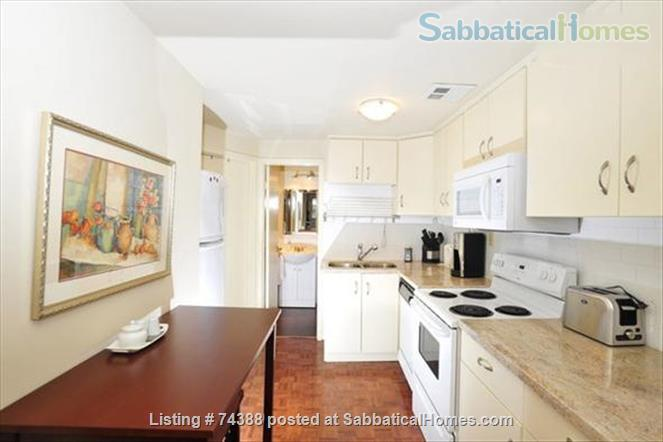 Beautiful 2 Bedroom newly renovated lower level apartment. Professionally designed and decorated. Home Exchange in Toronto, Ontario, Canada 3