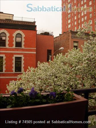 Ideally located 3-BR apartment near Central Park Home Exchange in New York, New York, United States 7
