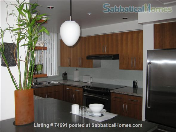 Spacious 2bdrm 2bath Yaletown Condo. All utilities included. Steps from downtown parks, seawall, community centre, theatres, restaurants, art galleries, shops and a school. Home Rental in Vancouver, British Columbia, Canada 4