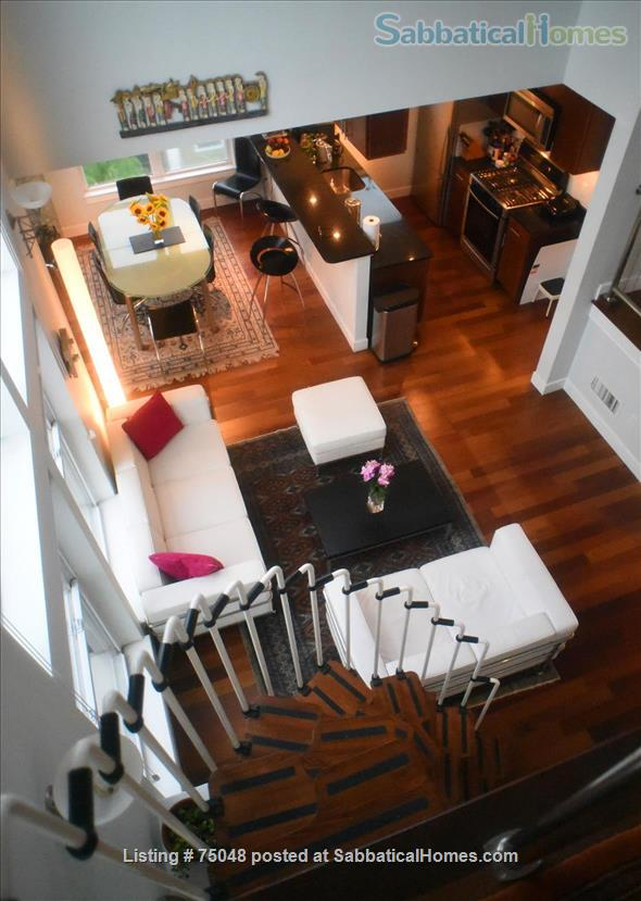 Stunning Cambridge loft filled with books, lots of light Home Rental in Cambridge, Massachusetts, United States 1