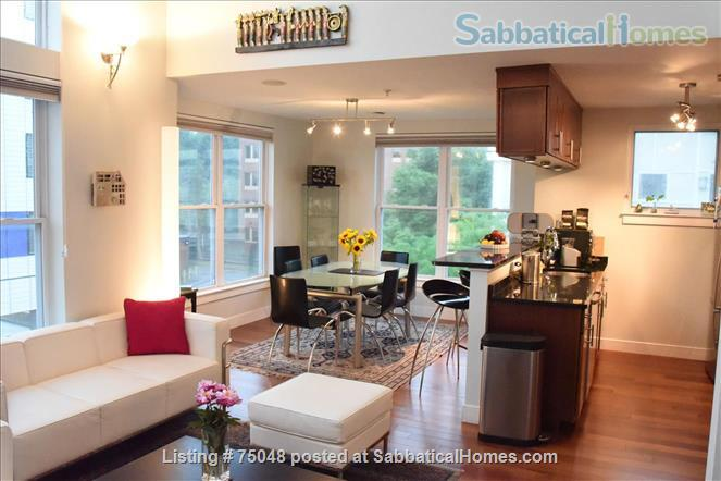 Stunning Cambridge loft filled with books, lots of light Home Rental in Cambridge, Massachusetts, United States 2