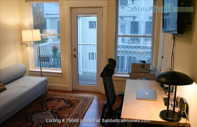 Stunning Cambridge loft filled with books, lots of light Home Rental in Cambridge, Massachusetts, United States 7