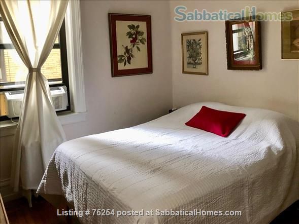 BEAUTIFUL CHELSEA APARTMENT FOR ONE YEAR OR MORE Home Rental in New York, New York, United States 4