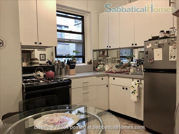 BEAUTIFUL CHELSEA APARTMENT FOR ONE YEAR OR MORE Home Rental in New York, New York, United States 6