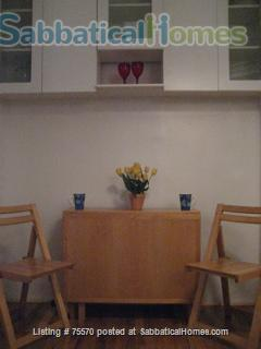 Clean, Quiet, Charming 1 Bedroom for Rent Home Rental in New York, New York, United States 3