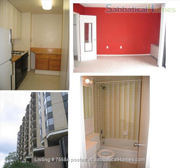 A large alcove studio (more than 600 sq ft) apartment on 5th Floor completely furnished Home Rental in Bethesda, Maryland, United States 1
