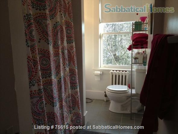 1 Bedroom Apt Close to Hospitals, Universities and Subway Home Rental in Brookline, Massachusetts, United States 3