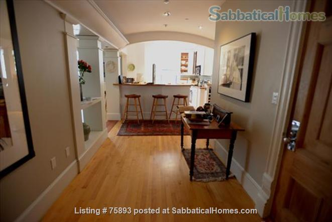 Contemporary, light-filled, 2.5 bdrm luxury furnished apartment on  4  Acre Estate Home Rental in Newton, Massachusetts, United States 9