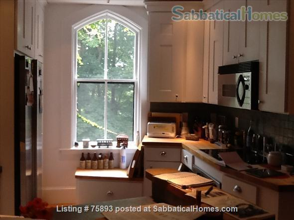 Contemporary, light-filled, 2.5 bdrm luxury furnished apartment on  4  Acre Estate Home Rental in Newton, Massachusetts, United States 8