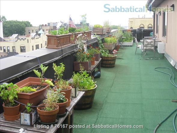 Beautiful Spacious NYC Apartment & Terrace near Forest Park Home Exchange in Queens County, New York, United States 7