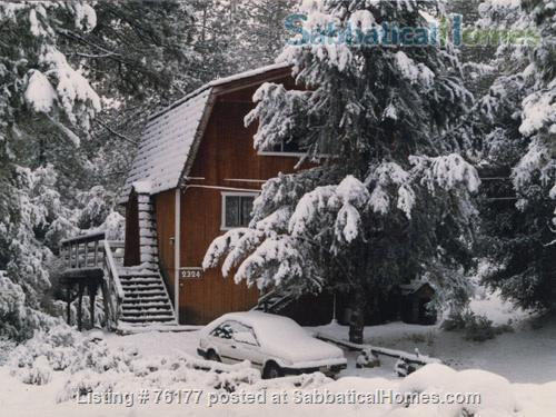 Cozy Rustic Mountain Cabin 1.5 hours from Los Angeles Home Rental in Frazier Park 4