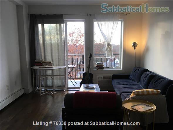 Beautiful Brooklyn apartment  Home Rental in Kings County, New York, United States 1