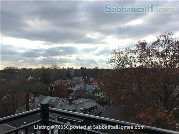 Beautiful Brooklyn apartment  Home Rental in Kings County, New York, United States 2