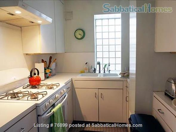 Sunny Chelsea loft, spacious top flr; 2 lvg rms. Optional:STEINWAY-M4extra$ Home Rental in New York, New York, United States 3