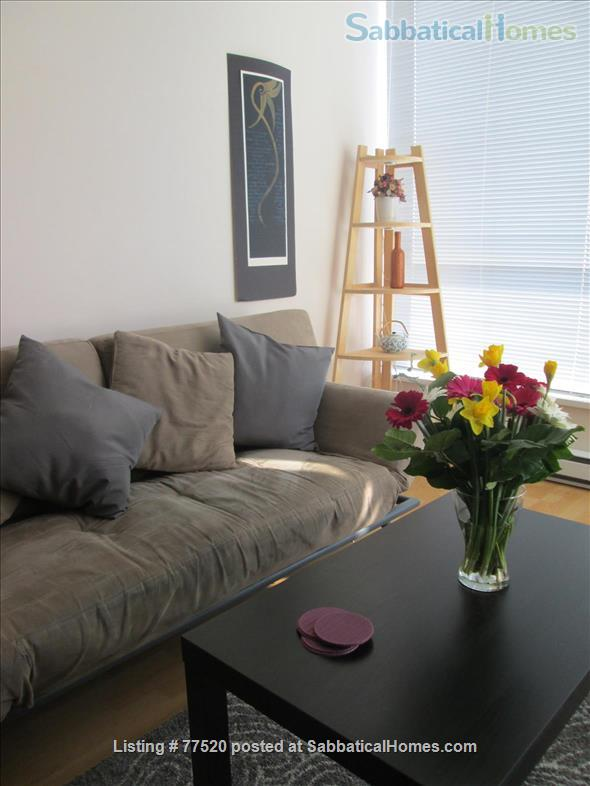 1 BEDROOM Furnished  Downtown Condo July 1 2021 Home Rental in Vancouver, British Columbia, Canada 0