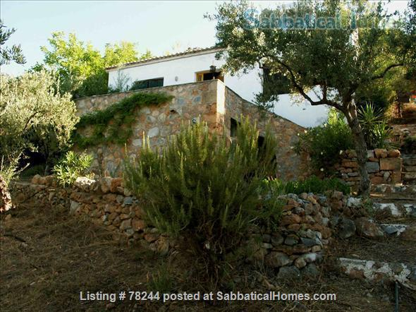 Peloponnese, cottage,  8' by foot from sandy beach, translucid water, panoramic view on see Home Rental in Lefktro, , Greece 4