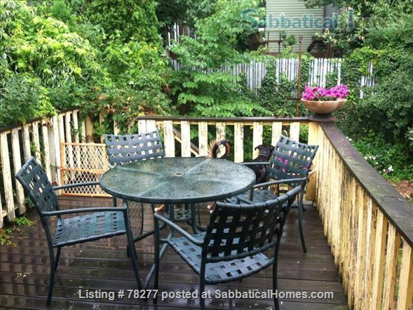Lovely Somerville 4 BR Apartment near Harvard, Tufts, MIT Home Rental in Somerville, Massachusetts, United States 8