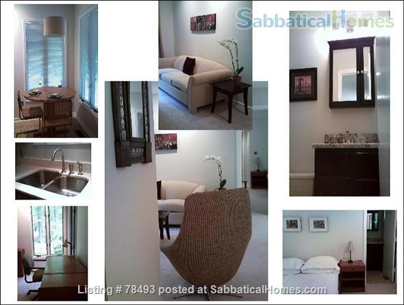 Private Turn-Key Apartment Very Close to UNC!  Renovated & Fully Furnished  on 1.3 Wooded Acres.  ALL UTILITIES INCLUDED! Home Rental in Chapel Hill, North Carolina, United States 1