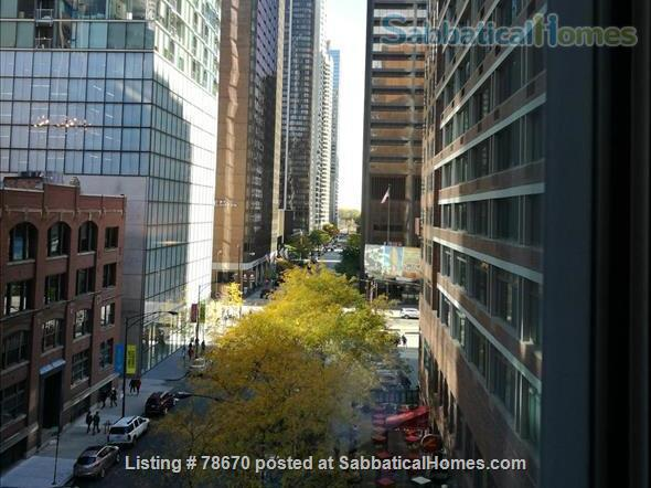 Downtown Chicago Beach and Mag Mile location Home Rental in Chicago, Illinois, United States 9