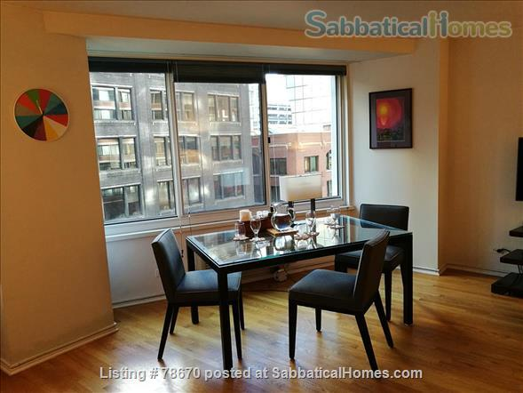 Downtown Chicago Beach and Mag Mile location Home Rental in Chicago, Illinois, United States 0