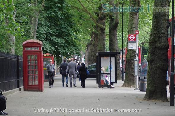 Charming Mansion Apartment In Notting Hill Gate- Holland Park Home Rental in Greater London, England, United Kingdom 0