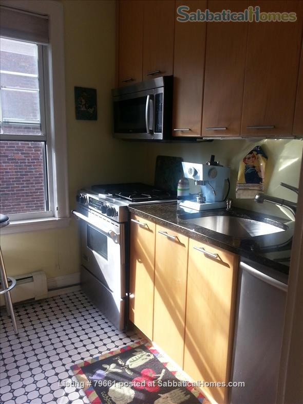 Very near Harvard Yard, Family Condo Home Rental in Cambridge, Massachusetts, United States 0