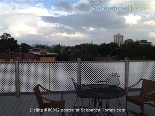 Sunny, furnished 1-bedroom penthouse apartment in Harvard Square with parking and roof deck Home Rental in Cambridge, Massachusetts, United States 9