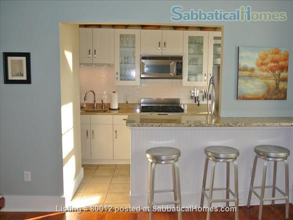 Sunny, furnished 1-bedroom penthouse apartment in Harvard Square with parking and roof deck Home Rental in Cambridge, Massachusetts, United States 0
